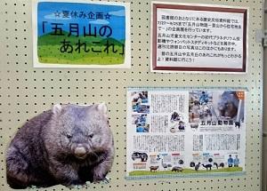 honkan_doubutuen3 - コピー.jpg